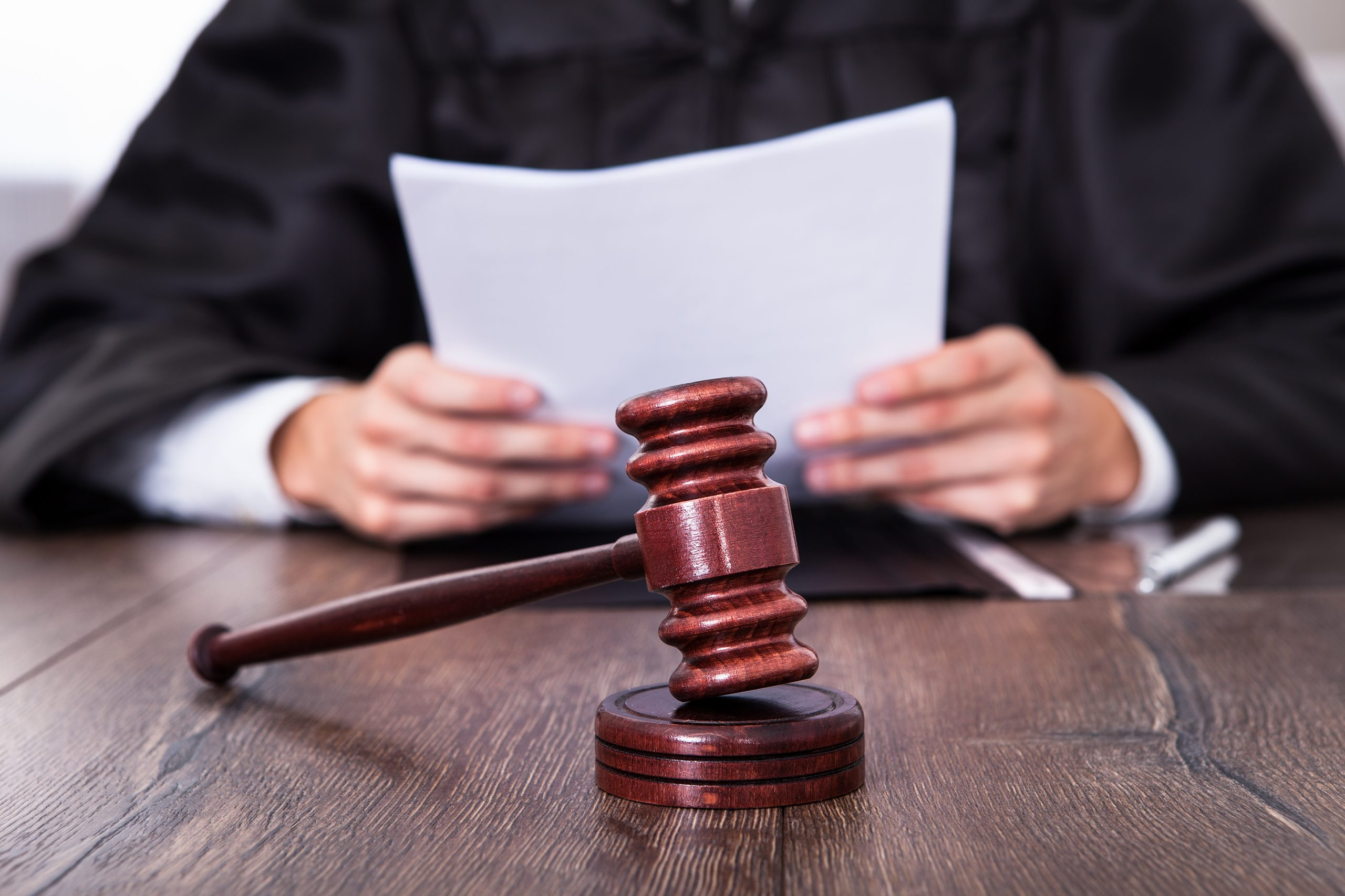 Relief for forestry families after successful Federal Court appeal